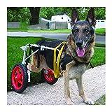 KHUY Carrellino Cane Disabile Grande Carrello per Cani Anziani Cani Wheel...