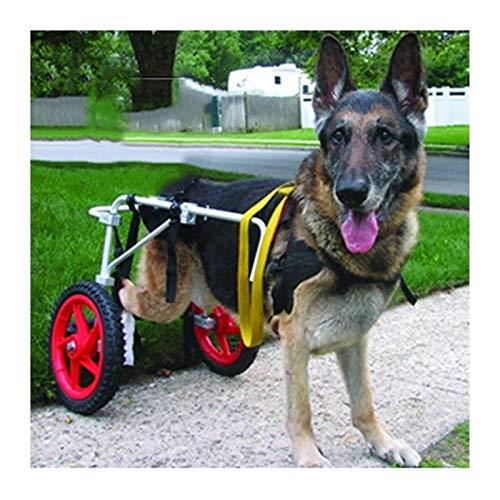 KHUY Carrellino Cane Disabile Grande Carrello per Cani Anziani Cani Wheel Sedie Pedica delle Gambe Posteriori Riabilitazione, Walkin Wheels Aiuta I Cablaggi (Size : X-Large)