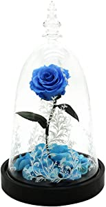 SHJICH Eternal Rose, Beauty And The Beast Glass Cover Home Decor Wedding Decorations And Gifts For Women Valentine's Day