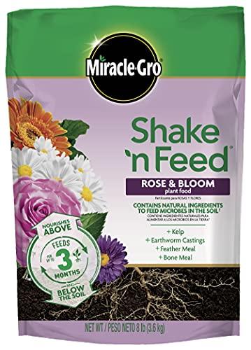 Miracle-Gro Shake 'N Feed Rose & Bloom Plant Food, 8 lb.