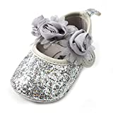 Antheron Baby Girls Mary Jane Flats Soft Sole Infant Moccasins Floral Sparkly Toddler Princess Dress Shoes(Silver,0-6 Month)