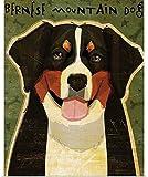 XIAOBAO Berner Sennenhund Vintage Blechschild Pub Club Cafe