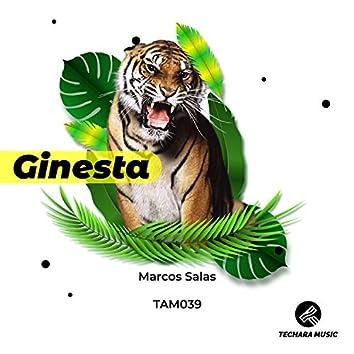 Ginesta