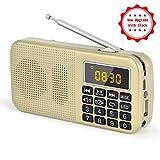 Radio J-725C Portable Radio-réveil FM/MP3/SD/USB/Horloge PRUNUS avec Batterie de Grande Capacité(3000mAh). Lecture Longue Durée(Plus de 30 Heures).(Pas de Fonction de Mémoire Manuelle)