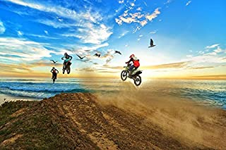 11 x 14 252 Pc Puzzle Motocross Flying Through The Air with Birds