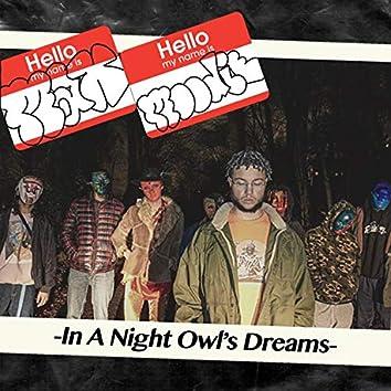 In a Night Owl's Dreams