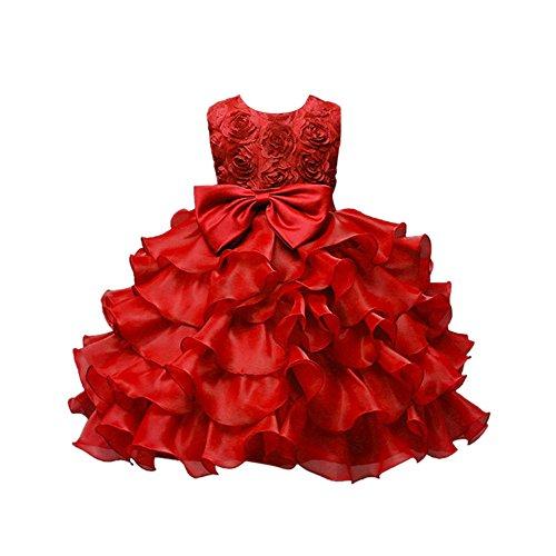 Longra Abiti da Bambini Abiti da Sposa Ricamo Rose Matrimonio Festa di Compleanno Vestito con Fiocco Carnevale Cerimonia Costume Tulle Vestito Bambina 6 Mesi-10 Anni