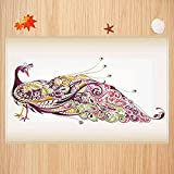 Alfombra de baño Antideslizante,Pavo Real, pájaro Abstracto con Colorido diseño Floral artístico de Plumas, Rosa Seca Tierra amar Apto para Cocina, salón, Ducha (50x80 cm)