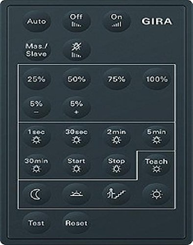 Gira 237300 IR-Fernbedienung Sensotec LED