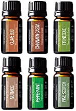 Winter Essential Oils Set - Gift Set of 6 Classic Holiday Essential Oils - Cinnamon, Clove, Peppermint, Pine, Nutmeg & Fir - Pure & Tested, by Pure Body Naturals