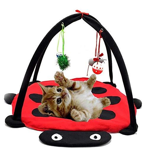Haustier Matte Katzenspielmatte mit Katzenspielzeug Katzenspielzelt Kissen Aktivität Gepolstertes Bett Faltbares Haus Katzenzelt mit hängenden Spielzeugbällen Mäusen Mehr für Katzen Übung