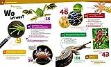 20 Reptilien und Amphibien. Gecko, Grasfrosch und Waran - 3