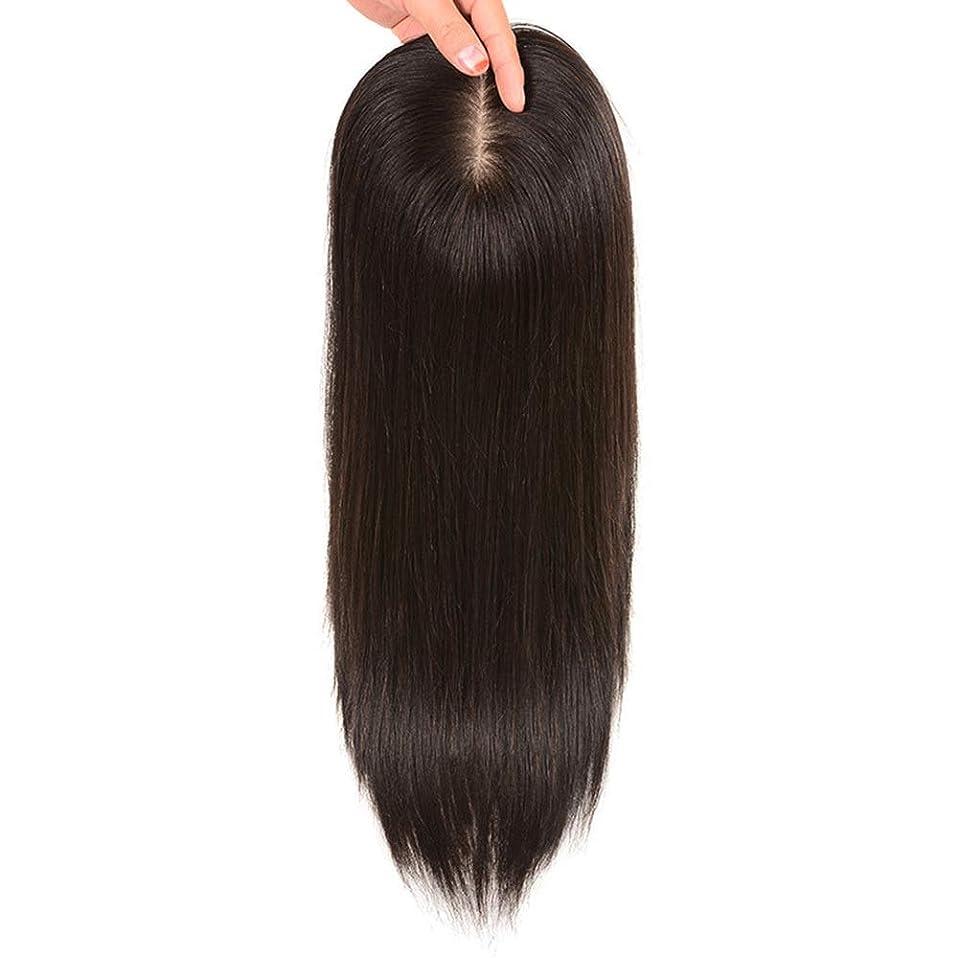 アーネストシャクルトン壊れたバンBOBIDYEE ヘアエクステンションの女性のストレートヘアクリップ目に見えない手の針本物の髪の毛のボリュームとカバーホワイトヘアの女性のかつらレースのかつらロールプレイングかつら (色 : Natural black, サイズ : [13x14] 30cm)