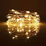 LED Fairy String Lights, 10-PACK 20 Micro Lights On Silver Copper Wire (Batteries Include) For DIY Wedding Centerpiece, Mason Jar Craft, Christmas Tree, Garlands, Party Decoration (warm white)