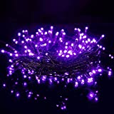 Twinkle Star 66FT 200 LED Indoor String Lights, Plug in String Light 8 Modes Waterproof for Outdoor Halloween Party Christmas Wedding Bedroom Decorations (Purple)