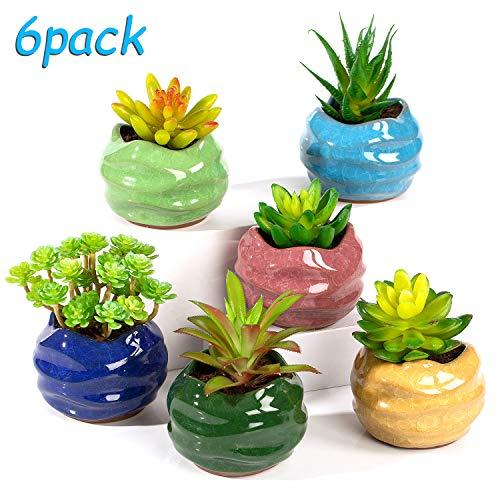 Yangbaga Mini Pflanztopf Blumentöpfe aus Keramik für Sukkulenten, Dekorvase Sukkulenten Töpfe Kaktus Pflanze Töpfe 6 Farben Set, (Ockergelb, Rot-violett, Meerblau, Nachtblau, Maigrün, Birnengrün)