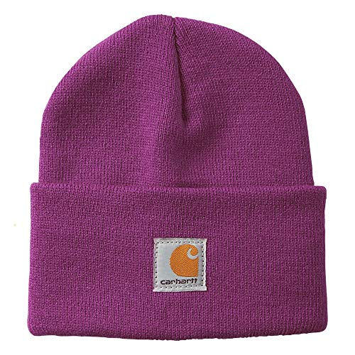 Carhartt Kids' Acrylic Watch Hat, Willowherb (Youth), One Size