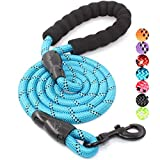 BAAPET 5 FT Strong Dog Leash with Comfortable Padded Handle and Highly Reflective Threads for Medium and Large Dogs (Blue)