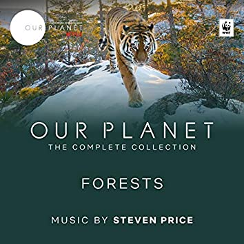"""Forests (Episode 8 / Soundtrack From The Netflix Original Series """"Our Planet"""")"""