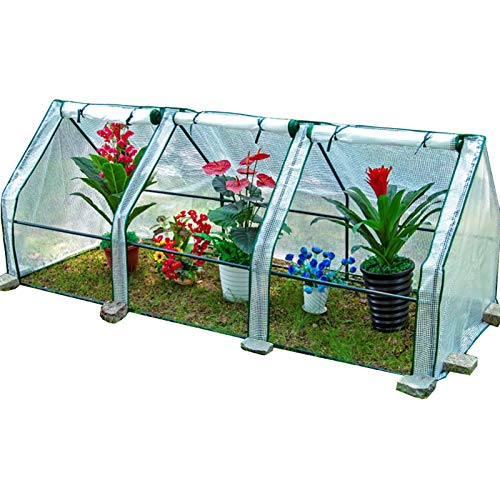 LXLA Portable Translucent Greenhouse with Roll-up Door, Low Tunnels Plant Grow House for Garden/Backyard/Balcony, Heavy Duty Metal Frame (Size : L 240cm×90cm×90cm)