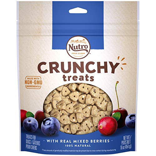 NUTRO Crunchy Dog Treats with Real Mixed Berries 16 Ounce Bag