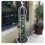 G.CHEN Climbing Flower Stand Potted Plant Stand Bird Shaped Obelisk Wrought Iron Pole Rose Flower Rattan Stand,White