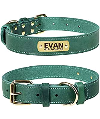 TagME Personalized Leather Dog Collars with Engraved Nameplate, Green Small