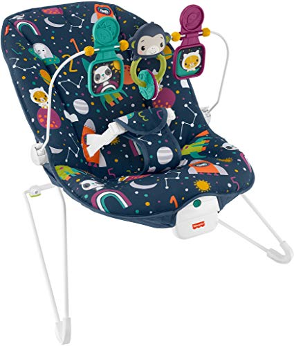Fisher-Price Baby's Bouncer Soothing Seat - Astro-Kitty