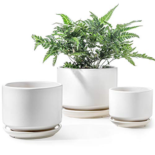 LE TAUCI Plant Pots with Drainage Hole and Saucer, 4+5.5+6.6 Inch Ceramic Indoor Planter, Round Flower Planter Pot with Tray, Small to Large Sized, Cream White, Set of 3