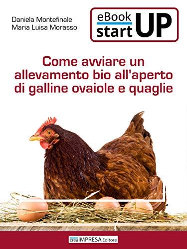 Come avviare un'allevamento biologico all'aperto di galline ovaiole e quaglie
