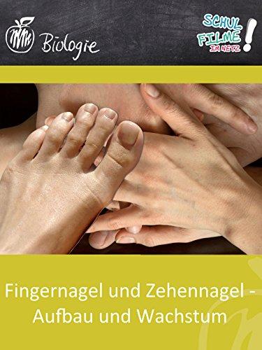 Fingernagel und Zehennagel - Aufbau und Wachstum - Schulfilm Biologie