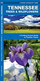 Tennessee Trees & Wildflowers: A Folding Pocket Guide to Familiar Plants (Wildlife and Nature Identification)
