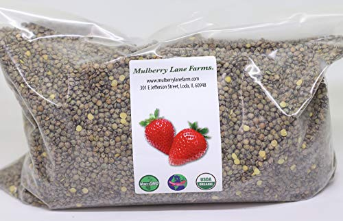 French Green Lentils 5 Pounds Petite, USDA Certified Organic, Non-GMO Bulk, Product of USA, Mulberry Lane Farms
