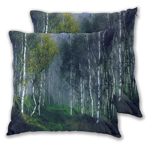 MOBEITI Square Cushion Cover 65x65cm 2 pieces Set,Misty Forest Ehereal Nature View Birch Grove Meadow Herbal Plant Fog,decorative Throw Pillow Case for Couch Sofa Chair Bed Home office Decor