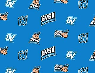 Fleece Grand Valley State University Lakers GVSU Turquoise College Fleece Fabric Print by The Yard #sgvsu035s