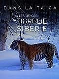 Dans la taïga, sur les traces du tigre de Sibérie