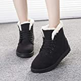 YXDS 1 par de Botas de Nieve, Botas Cortas de Moda para Mujer, Zapatos de algodón con Cordones, Zapatos cálidos y de Terciopelo para Estudiantes