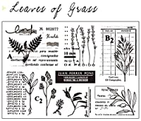 草の葉DIYスクラップブッキングフォトアルバム用透明クリアシリコンスタンプシール装飾クリアスタンプM1262