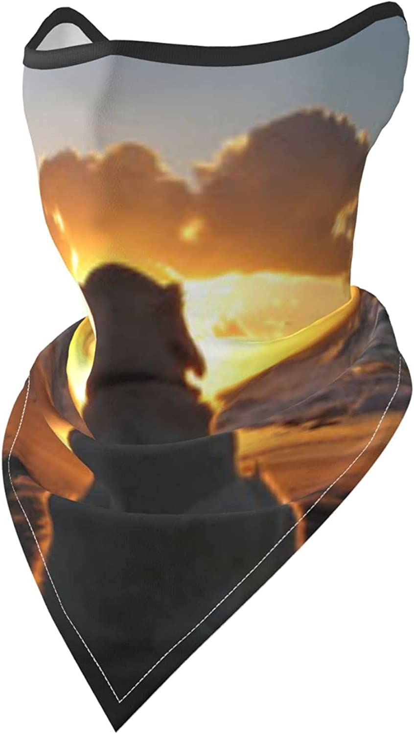 Dog and Sunset Pictures Prints Breathable Bandana Face Mask Neck Gaiter Windproof Sports Mask Scarf Headwear for Men Women Outdoor Hiking Cycling Running Motorcycling