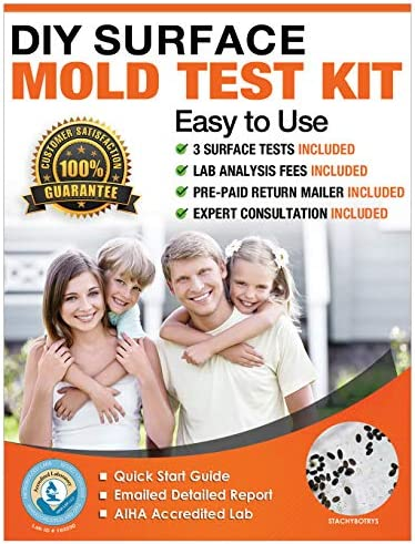 DIY Mold Test Kit for Home 3 Surface Mold Tests Mold Test Kit Includes Lab Analysis Mold Testing product image