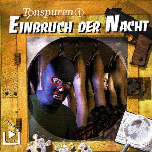Einbruch der Nacht (Tonspuren 1) Titelbild