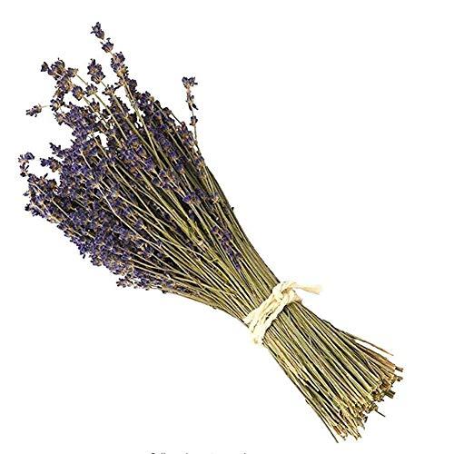 country hill Natürliche Lavendel Trockenblumen Heimdekoration echte Blumen Literatur und Kunst Retro Handwerk Blumen