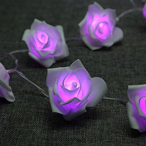 Ghirlanda di luci LED Denknova /diodi luminosi a forma di rose /luce (rosa o viola)/A Batteria/Natale, feste, matrimoni/decorazione da interni ed esterni., lila, 30 LEDs