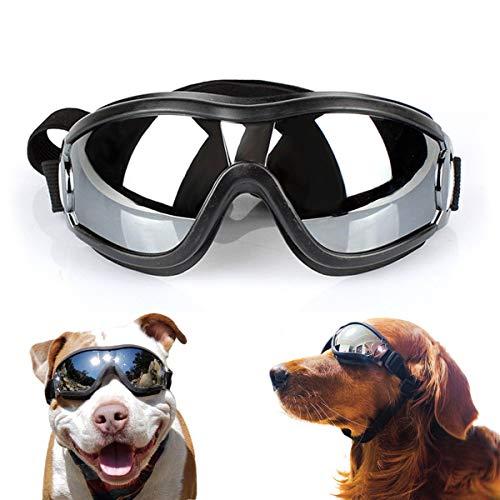 Namsan -   Hundebrille Netive