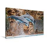 Premium Textil-Leinwand 90 x 60 cm Quer-Format Delfine aus