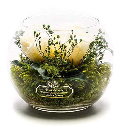 Rosen-Te-Amo, Langlebiger Blumenstrauß - 3 Konservierte Rosen in Glas-Vase handgefertigt Deko-Pflanzen und Bindegrün. Infinity Rosen als Deko Weihnachten, oder Geschenke für Frauen