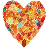 Bgraamiens Puzzle-Autumn in My Heart -750 Pieces Autumn Leaves Love Heart Shape Challenge Blue Board Jigsaw Puzzles