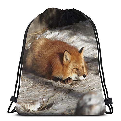 Affordable shop Fox Nature - Mochila de invierno con cordón, ligera, para gimnasio, viajes, yoga, informal, para senderismo, natación, playa