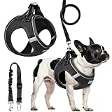 Segorts Step-in Air Dog Harness and Leash Set for Small Dog & Cats - All Weather Mesh No Pull, Reflective, Breathable and Walking Escape Proof Pet Harness - Adjustable Dog Harness with Dog Seat Belt…
