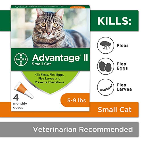 topical treatment for fleas on cats